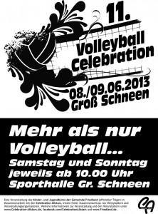 Plakat der 11. Volleyball Celebration am 8. und 9. Juni in Groß Schneen
